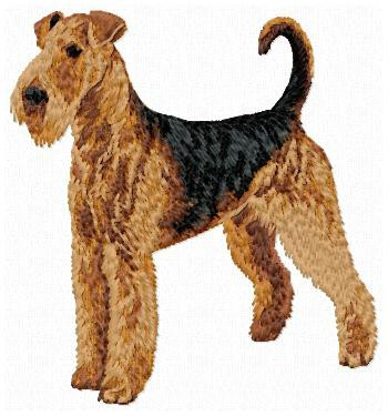 Airedale Terrier - DD141