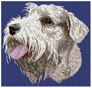 Sealyham Terrier - DD87