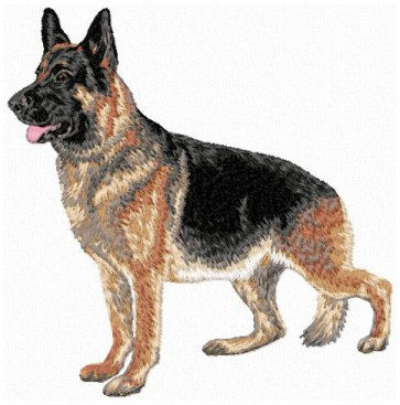 German Shepherd - Large DD149