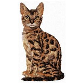 Bengal Cat - CD11