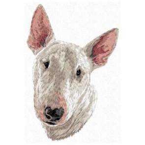 Bull Terrier - DD152