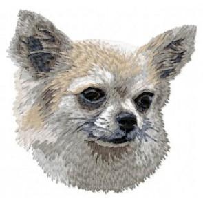 Chihuahua - DD28