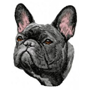 French Bulldog - DD40