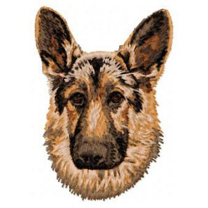 German Shepherd - DD42