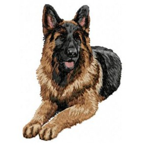 German Shepherd - DD43