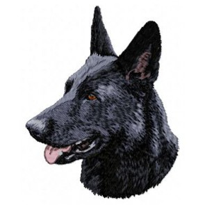 German Shepherd - DD44