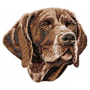 German Shorthaired Pointer - DD53