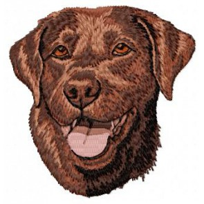 Labrador Retriever - DD59