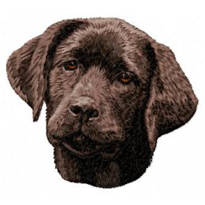 Labrador Retriever - DD60