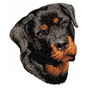 Rottweiler - DD83