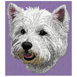 West Highland White Terrier - DD92