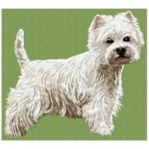 West Highland White Terrier - DD93
