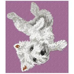 West Highland White Terrier - DD94