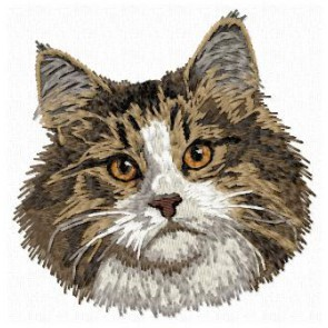 Norwegian Forest Cat -CD8