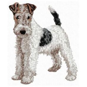 Fox Terrier - DD103