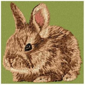 Rabbit -OD2